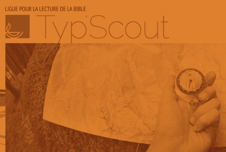Typescout